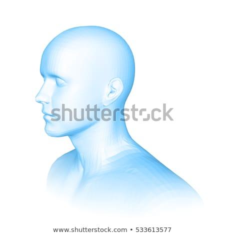 Human communication side view 3D Stock photo © djmilic