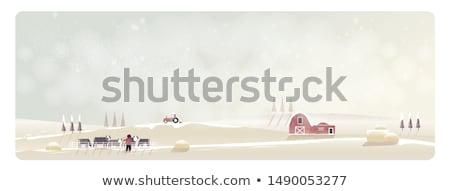 動物 牛 セット 少年 車 ボート ストックフォト © toyotoyo