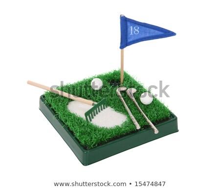 Taşınabilir golf ayarlamak lüks hediye durum Stok fotoğraf © nomadsoul1