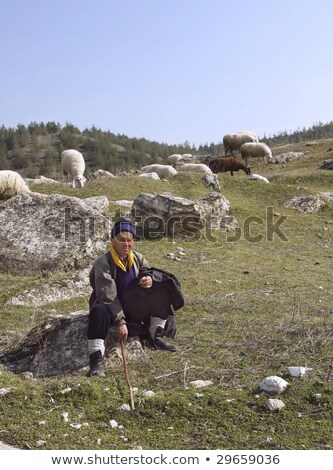 Nomadic sheepherder Stock photo © photoblueice