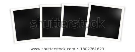 Köteg Polaroid képek természet nap keret Stock fotó © ldambies
