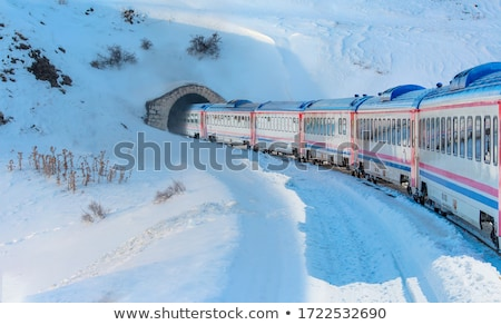 Electric train on the go Stock photo © deyangeorgiev