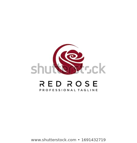 Rosa logotipo praça flores projeto jardim Foto stock © davisales