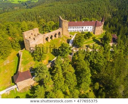 ruins of velhartice castle czech republic stock photo © phbcz
