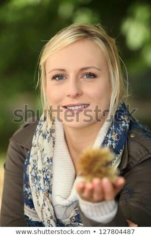 woman holding a spiky chestnut case stock photo © photography33