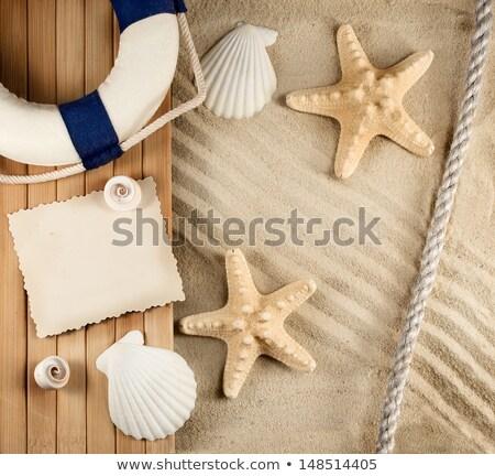 vacanze · ricordi · immagini · spiaggia · natura · sfondo - foto d'archivio © moses