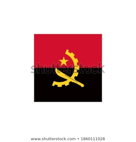 кнопки цветы Ангола флаг стране Сток-фото © perysty