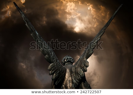 aranyos · angyal · pózol · haj · fekete · belső - stock fotó © prill