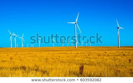 wind turbines in Colorado prairie Stock photo © PixelsAway