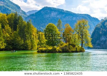 swiss lake island Stock photo © zittto
