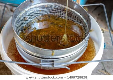 honey extraction machinery Stock photo © mady70