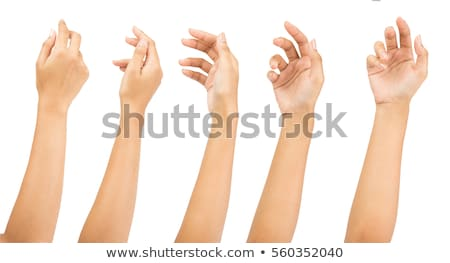 Open palm hand gesture of Female hand Stock photo © bloodua
