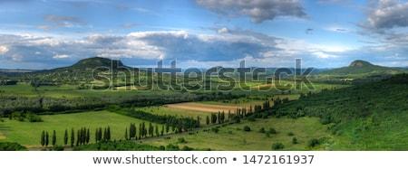 landschap · Hongarije · laat · namiddag · zon · veld - stockfoto © gabor_galovtsik