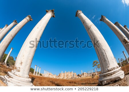 Salamis archaeological site. Famagusta district. Cyprus Stock photo © Kirill_M