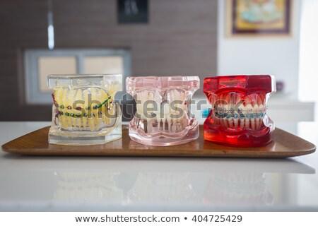 Tapasz állkapocs harap emberi ujj izolált Stock fotó © frescomovie