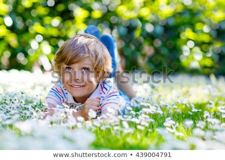 szőke · fiú · park · család · fény · narancs - stock fotó © Paha_L