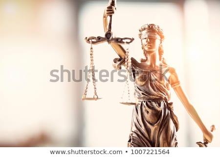 Avukat terazi adalet beyaz kitap Stok fotoğraf © wavebreak_media