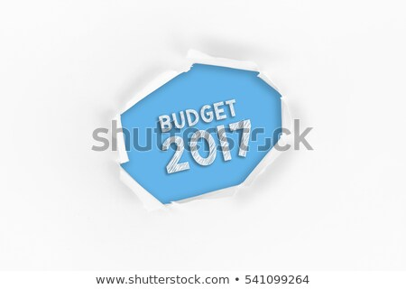 Stock photo: Budget Year 2017 Torn Paper Concept