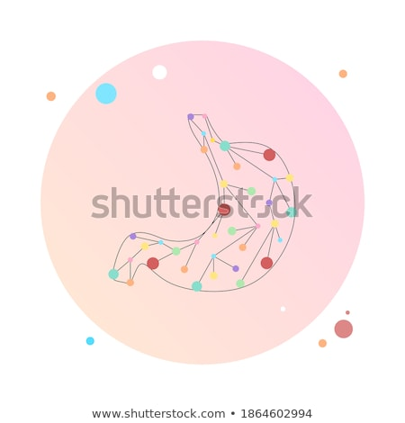 Stockfoto: Spijsverteringsorganen · abstract · grijs · anatomie · maag