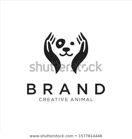 veterinarian with dog in hands vector illustration stock photo © rastudio