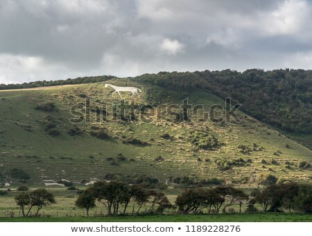 Litlington White Horse Stock photo © suerob