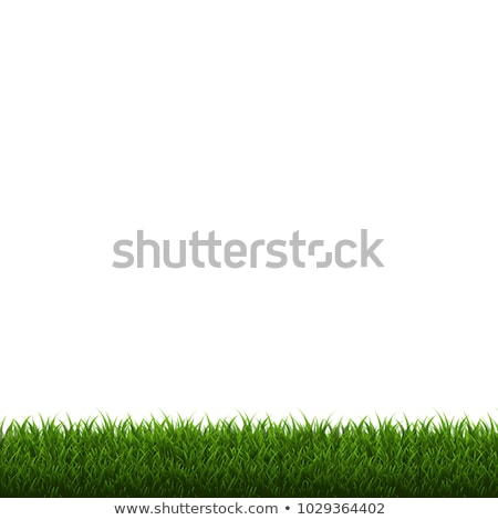 flores · da · primavera · natureza · cartaz · grama · gradiente - foto stock © adamson