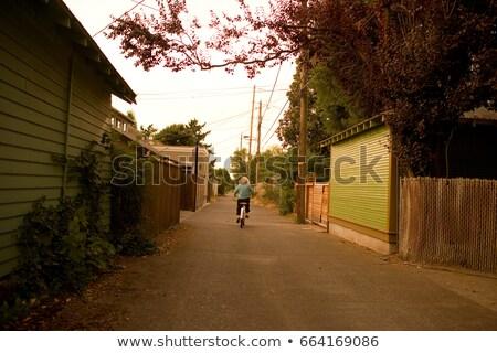 Chłopca rowerowe w dół rower wolności transportu Zdjęcia stock © IS2