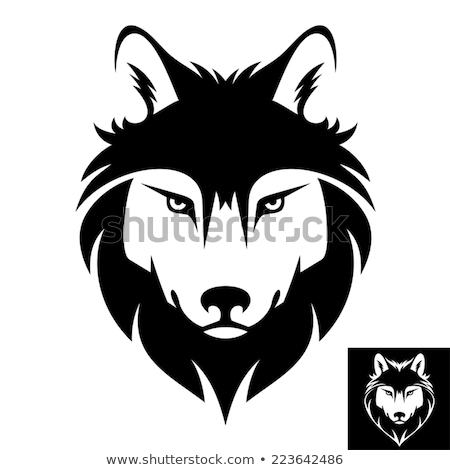 Farkas kabala sportok ikon illusztráció fej Stock fotó © patrimonio