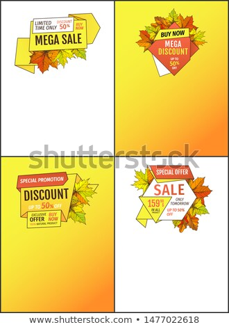Leaflets Set Limited Time Super Offer Autumn Sale Stock photo © robuart