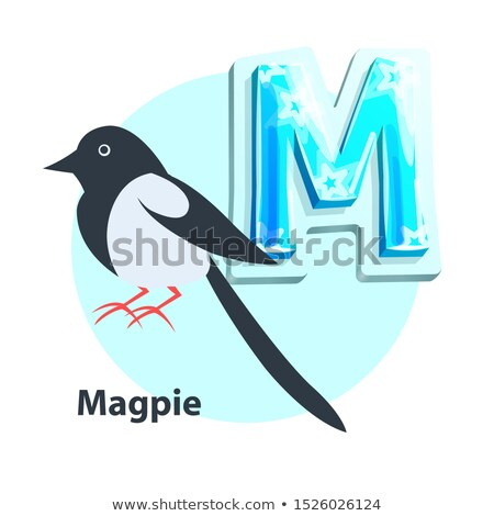 Magpie for M Letter in Children Crisscross-row Stock photo © robuart