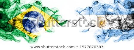 Dos banderas Argentina Brasil aislado Foto stock © MikhailMishchenko
