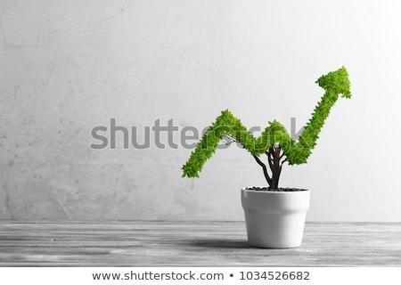 ビジネス 成長 文字 ノートブック デスク ストックフォト © Mazirama