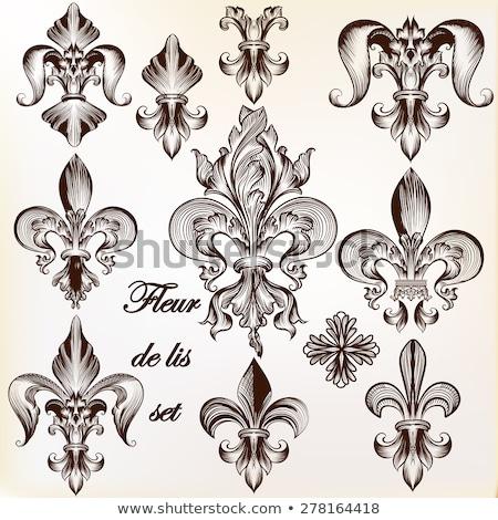Fleur. Vintage Style. Stock photo © smoki