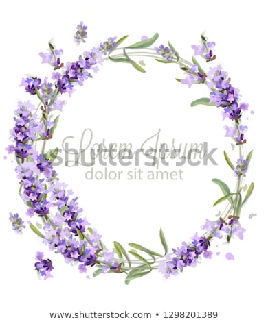 Spring card with lilac flowers Stock photo © Kotenko