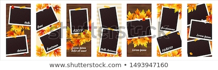 Editable Story Template Collection Photo Frames Transparent Back Stock photo © adamson