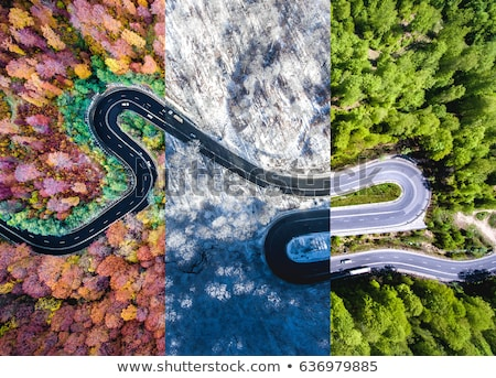 Aerial view of a car on winter road in the forest Stock photo © lightpoet