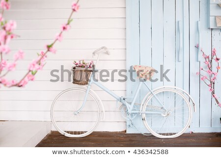 background with bicycle and beautiful flowers stock photo © elmiko