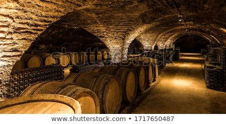 cellar with wine barrels Stock photo © neirfy
