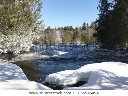 rushing river frozen water ice rocks winter landscape moving str stock photo © cboswell