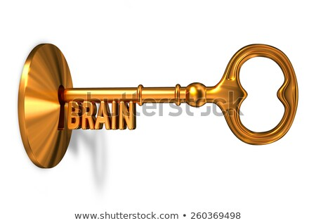 Beyin altın anahtar anahtar deliği yalıtılmış beyaz Stok fotoğraf © tashatuvango