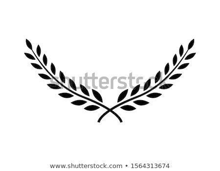 Krans teken illustratie witte sport ontwerp Stockfoto © get4net