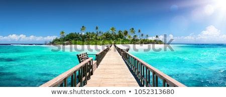 trópusi · tengerpart · hegyek · tájkép · trópusi · sziget · gyönyörű - stock fotó © goinyk