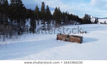 Single old shack on a snow field Stock photo © haraldmuc