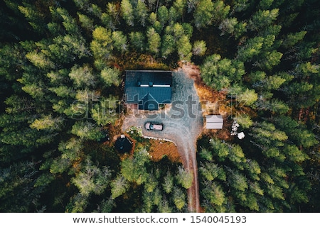 background of cottage in forest stock photo © rastudio
