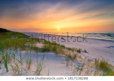 日没 · バルト海 · 海岸 · 夏 · ビーチ · 空 - ストックフォト © marekusz