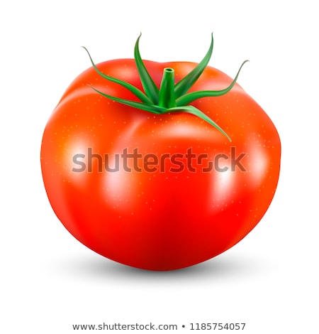 Realistic Illustration of a Red Tomato Stock photo © cidepix