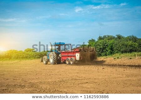Agrícola trator campo de trigo natureza verão campo Foto stock © stevanovicigor