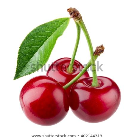 illustratie · kers · vruchten · icon · clipart · kunst - stockfoto © adamson