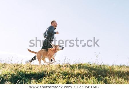 animal dog man_Sports & exercise Stock photo © toyotoyo