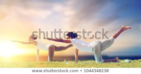 ioga · tabela · feminino · terno · sessão - foto stock © dolgachov